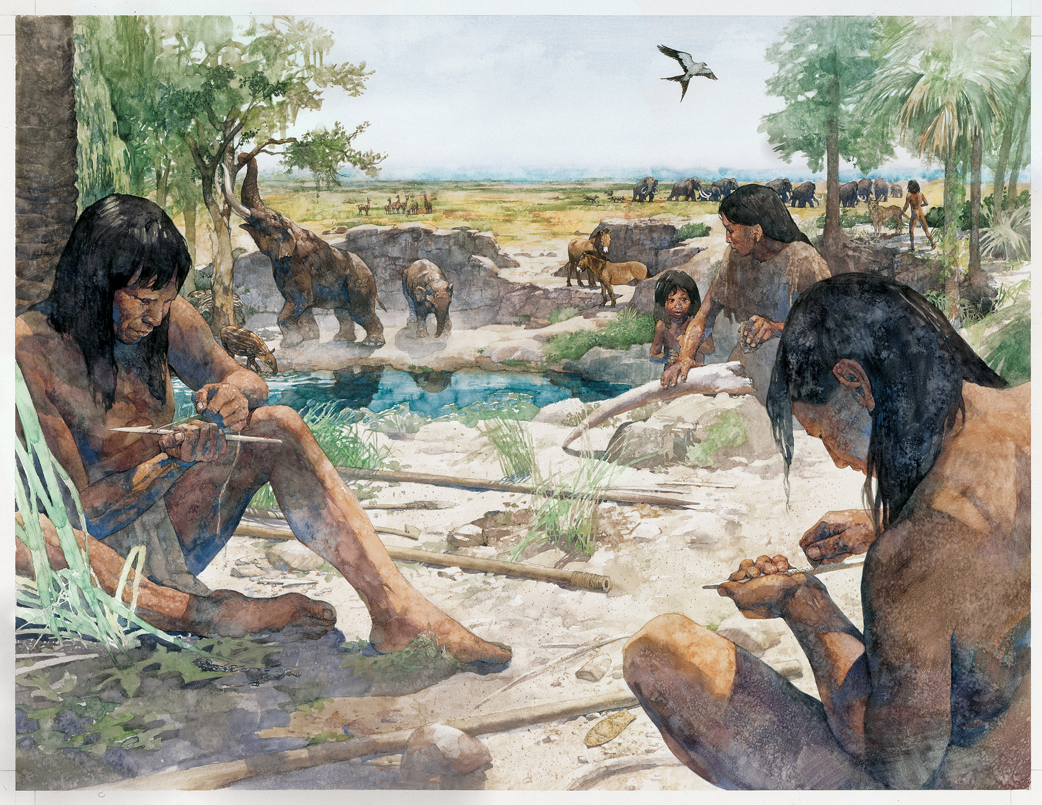 Indigenous peoples of the Americas  Wikipedia