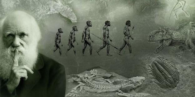Pichona Istòria de l'Umanitat (26): L'evolucion biologica e sociala